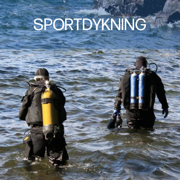 sportdykning.png